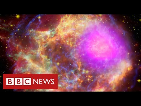 """Scientists find """"strong evidence"""" for new mystery sub-atomic force of nature – BBC News"""
